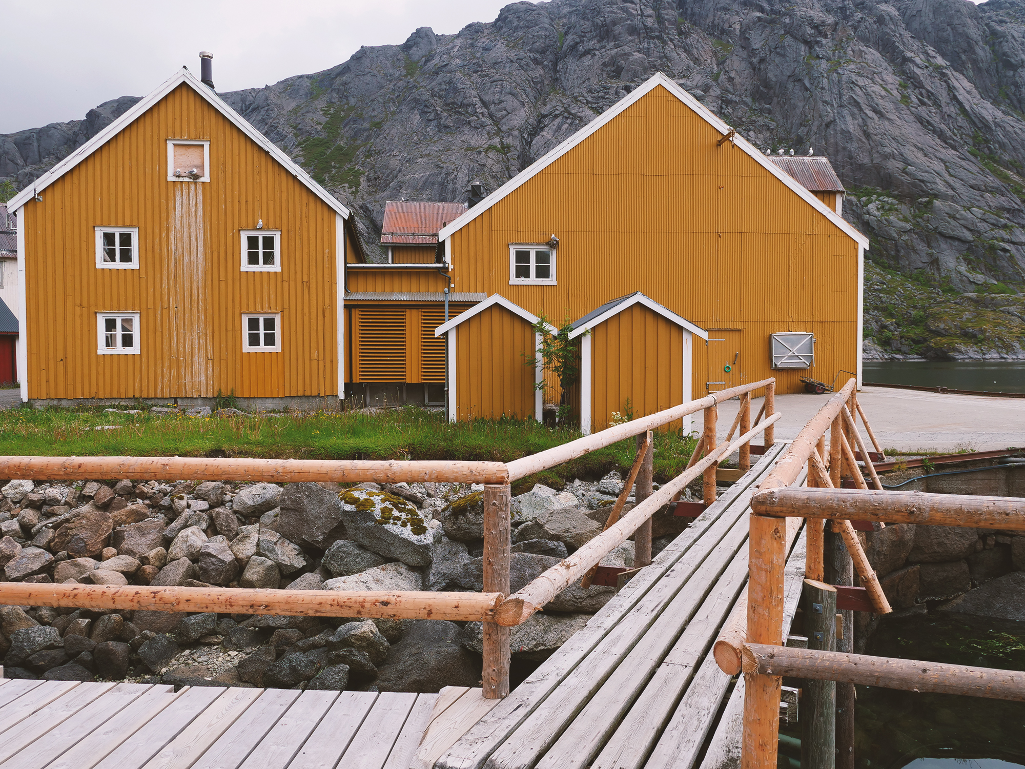 nusfjord lofoty norwegia