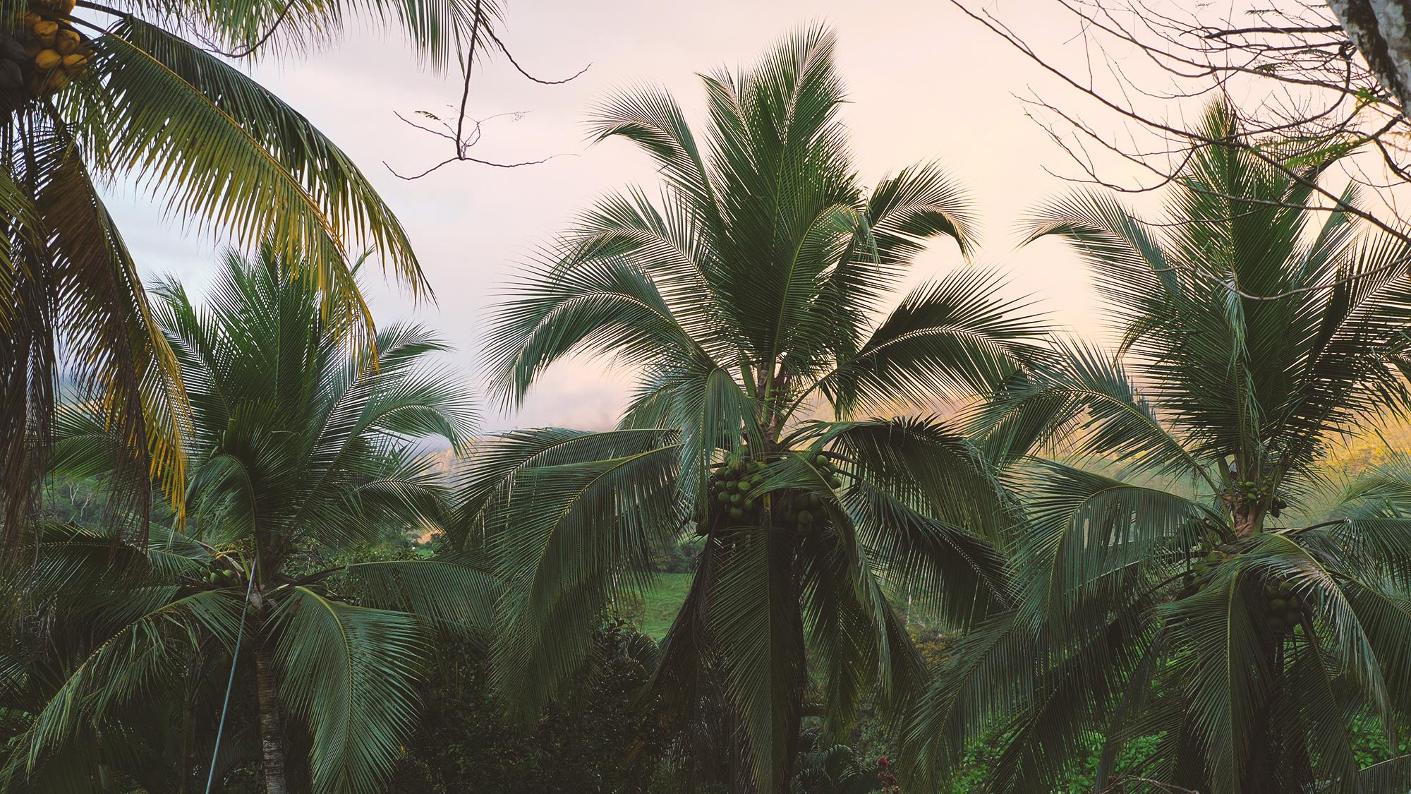 kostaryka dobre noclegi
