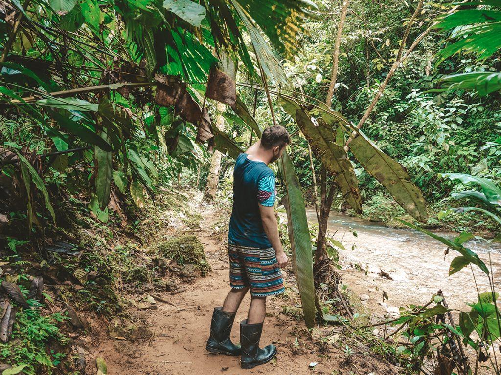 szlaki trekkingowe park corcovado
