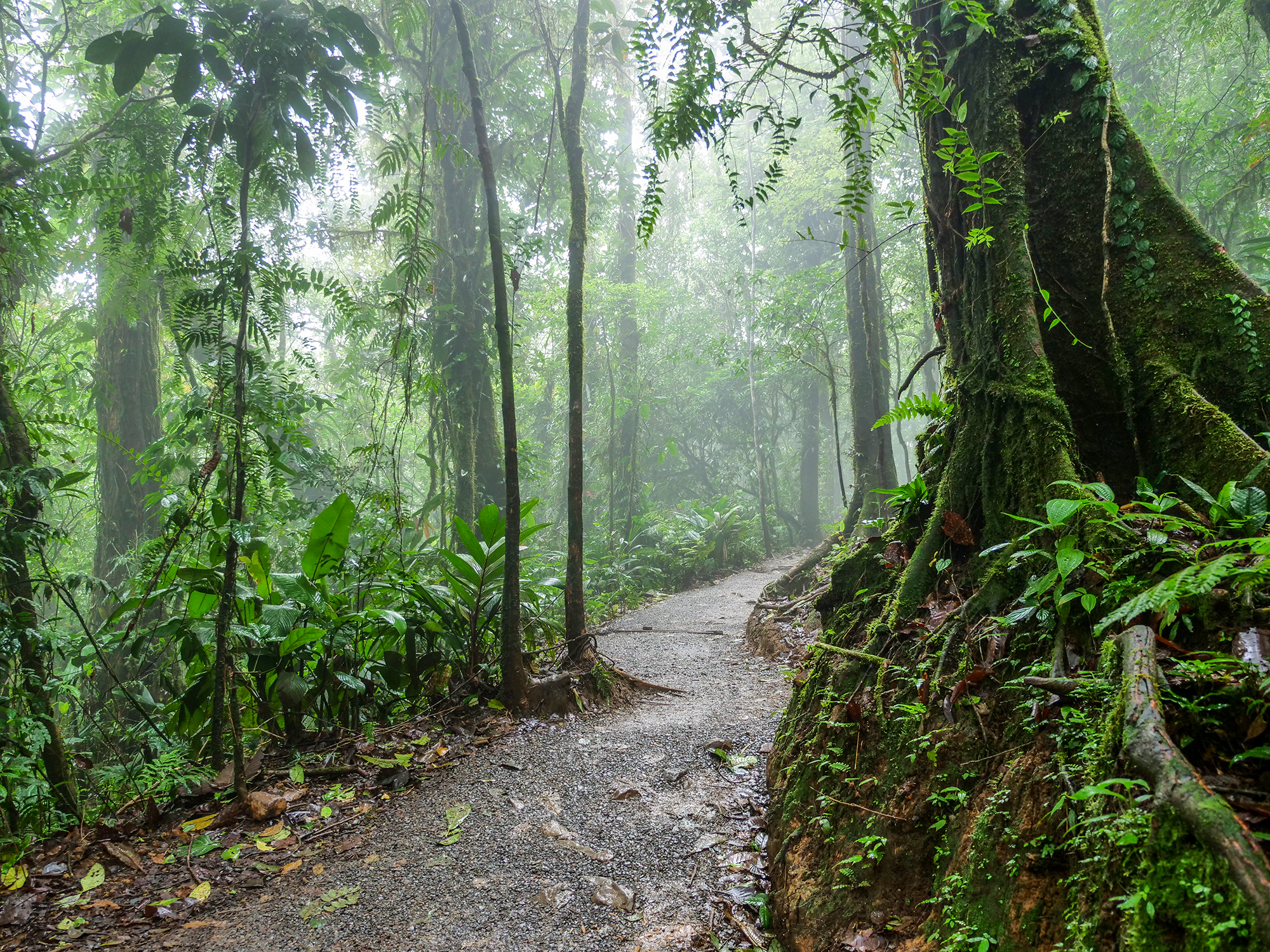 park tenorio kostaryka