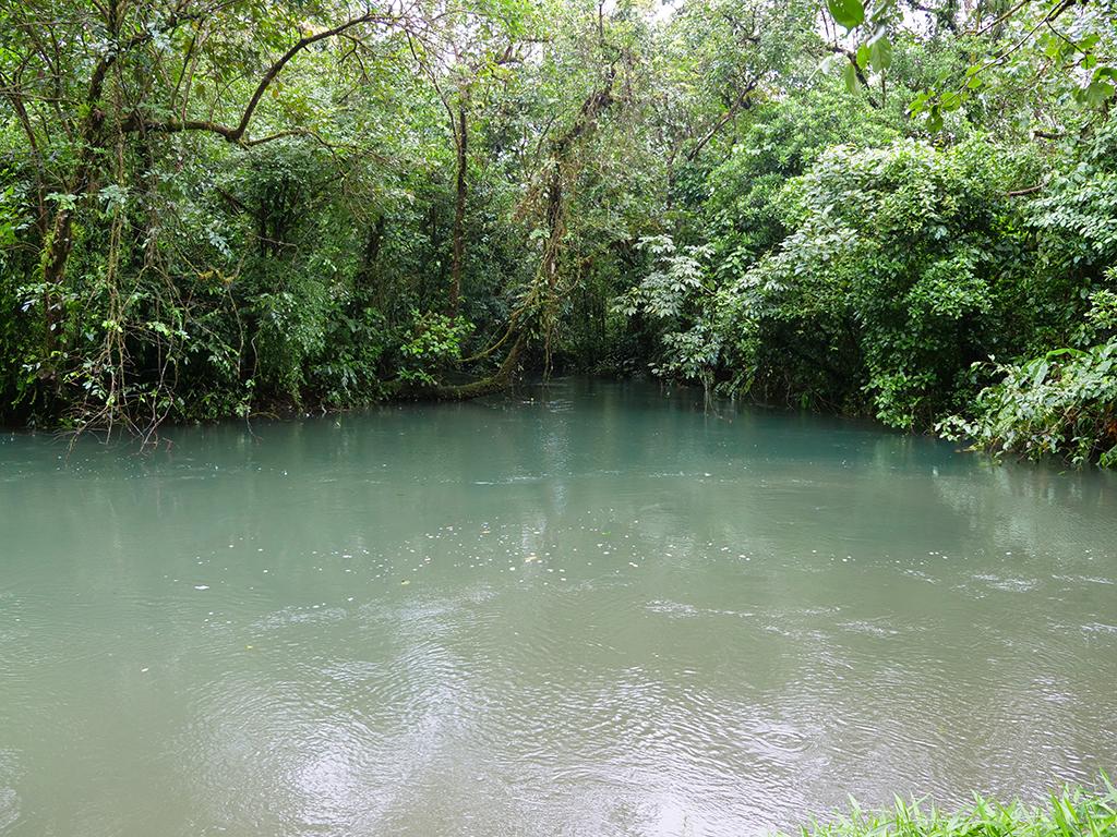 kostaryka tenorio park