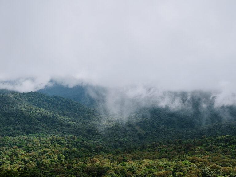 kostaryka monteverde co zobaczyć