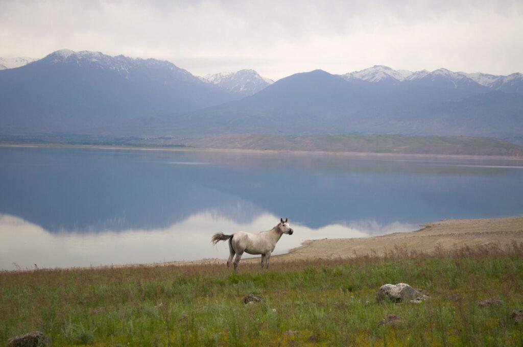 Kirgistan blog podróżniczy