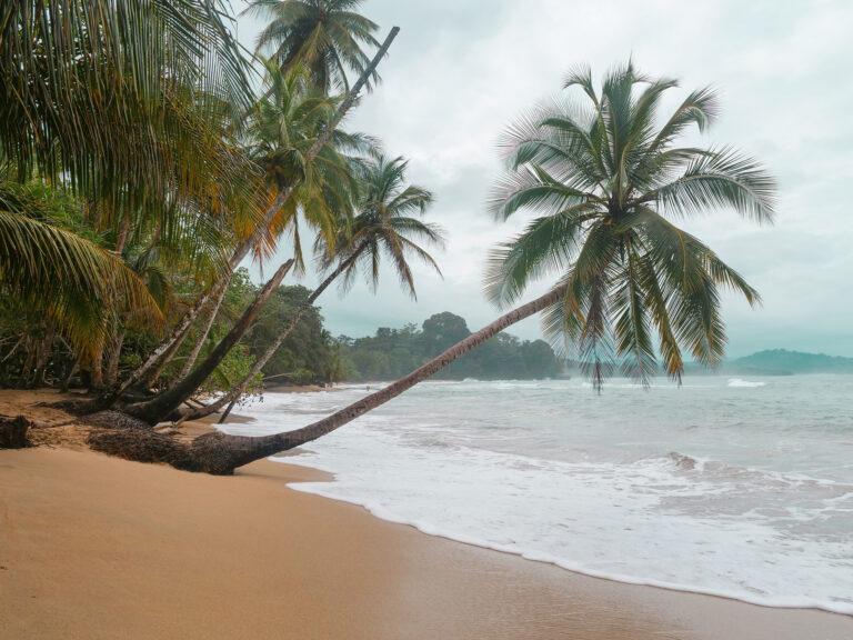 kostaryka plaże wybrzeże karaibskie