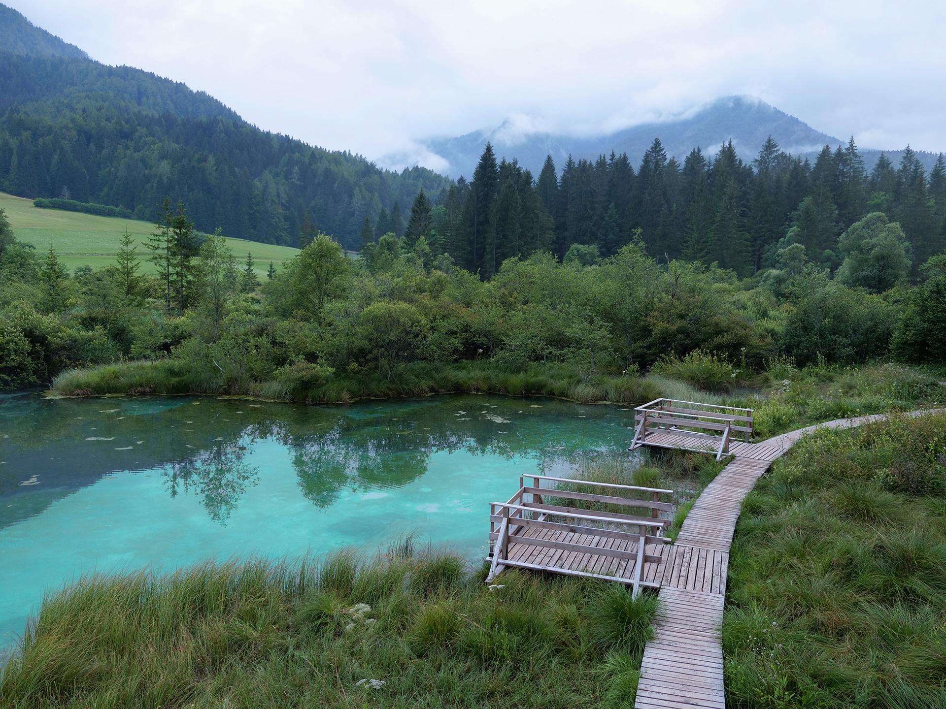 zelenci jezioro słowenia