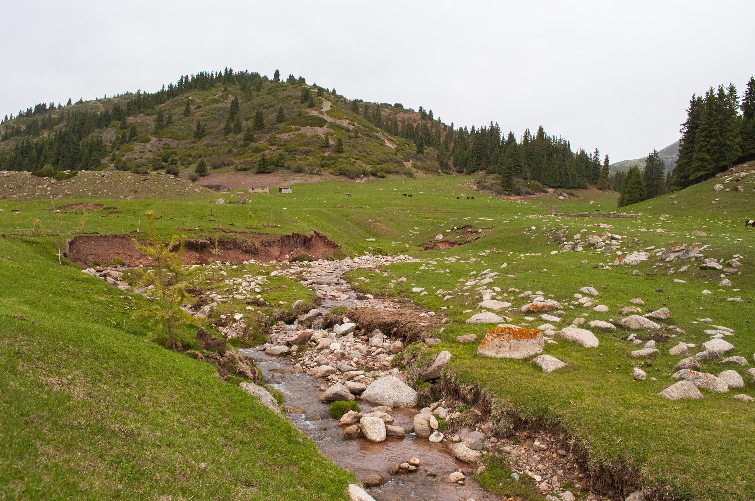 kirgistan kok jayik